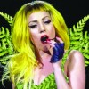 Duke professor names new fern genus in honor of Lady Gaga
